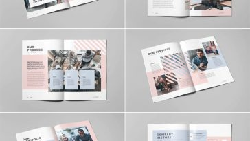 Business Brochure Template INDD